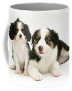 Puppies Coffee Mug by Jane Burton