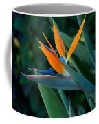 Balboa Park San Diego Coffee Mug