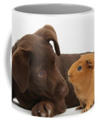 Puppy And Guinea Pig Coffee Mug by Mark Taylor