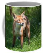 A British Red Fox Coffee Mug