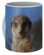 A Close View Of A Meerkat Suricata Coffee Mug