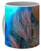 A Colony Of Red Whip Fan Corals Coffee Mug