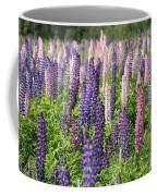 A Field Of Lupins Coffee Mug