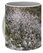 Almendros Coffee Mug