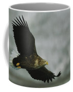 An Endangered White-tailed Sea Eagle Coffee Mug