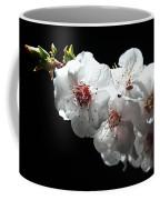 Apricot Flowers At Night Coffee Mug
