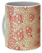 Bamboo Stem Coffee Mug
