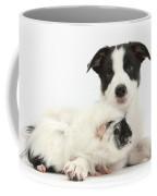 Border Collie Pup And Guinea Pig Coffee Mug