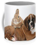Boxer Puppy And Netherland-cross Rabbit Coffee Mug