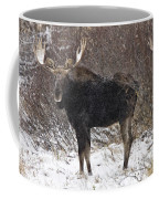 Bull Moose In Winter Coffee Mug