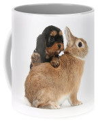 Cavapoo Pup And Sandy Netherland-cross Coffee Mug