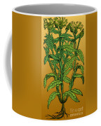 Centaurea Montana, Bachelors Button Coffee Mug