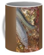 Clam Worm Coffee Mug
