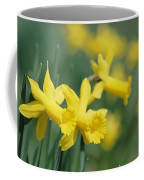Close View Of Early Spring Daffodils Coffee Mug