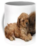 Cockerpoo Puppy And Rabbit Coffee Mug