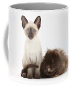Colorpoint Rabbit And Siamese Kitten Coffee Mug