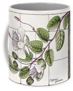 Colosseum: Flower Coffee Mug