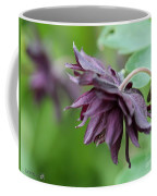Columbine Named Miss Mi Huish Coffee Mug