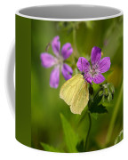 Common Brimstone Coffee Mug