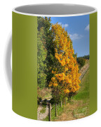 Country Road And Autumn Landscape Coffee Mug