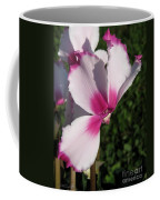 Cyclamen Named Victoria Coffee Mug