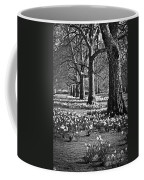 Daffodils In St. James's Park Coffee Mug