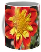 Dahlia Named Pooh Coffee Mug