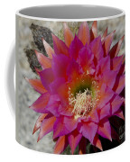 Dark Pink Cactus Flower Coffee Mug