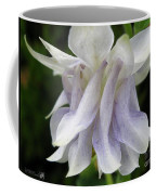 Double Columbine Named Light Blue Coffee Mug
