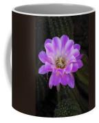 Echinopsis Aurea  Coffee Mug