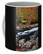 Fall Forest And River Landscape Coffee Mug by Elena Elisseeva