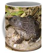 Gopher Frog Coffee Mug
