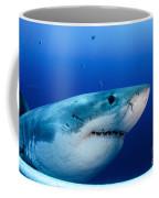 Great White Shark, Guadalupe Island Coffee Mug