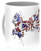 Heat Shock Protein 90 In A Larger Coffee Mug