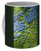 Hepatitis Virus Coffee Mug