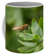 Hoverfly Coffee Mug