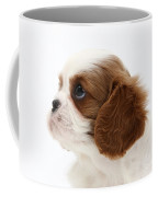 King Charles Spaniel Puppy Coffee Mug