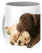 Labradoodle And Labrador Retriever Coffee Mug
