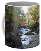 Laurel Creek Coffee Mug