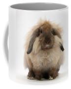 Lionhead-lop Rabbit Coffee Mug