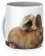 Long-haired Guinea Pig And Young Rabbit Coffee Mug