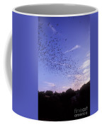 Mexican Freetail Bats Coffee Mug