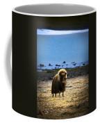 Muskox Ovibos Moschatusin The Northwest Coffee Mug