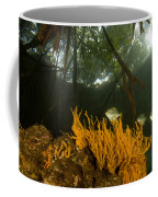 Orange Sponges Grow Coffee Mug