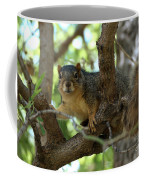 Out On A Branch Coffee Mug