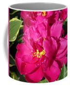 Peony Named Karl Rosenfield Coffee Mug