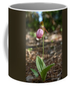 Pink Ladys Slipper Coffee Mug