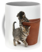 Playful Kittens Coffee Mug