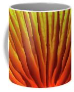 Porcelain Mushroom Oudemansiella Mucida Coffee Mug