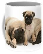 Pug And English Mastiff Puppies Coffee Mug